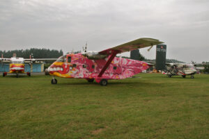Tandemsprung Flugzeug Deluxe